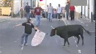 مصارعة الثيران الضحك بلا حدود