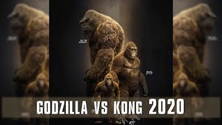 9 Updates of Godzilla vs Kong 2020