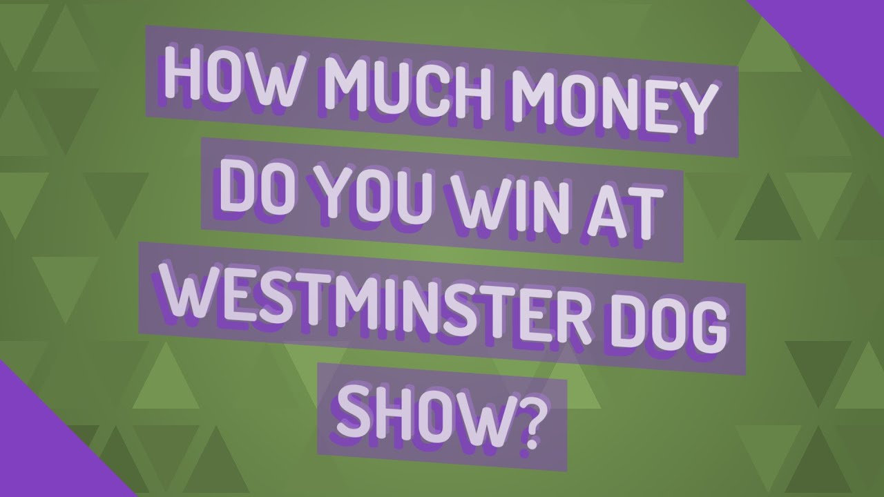 How much do you win on a show bet 3 betting in cash games