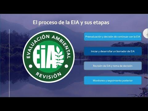 EL proceso de la EIA y sus etapas
