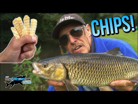 Epic Fishing with CHIPS! | TAFishing