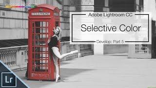 Lightroom 6 / CC Tutorial -  Selective Color Tutorial