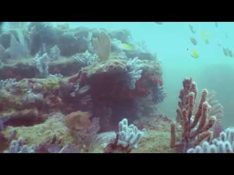 Galera San Francisco Marine Reserve, Ecuador