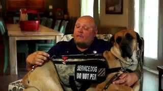 K9s For Warriors & Merrick Join Together For Veterans