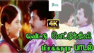 Vettu Vettu Kili Meesakara ||வெட்டு வெட்டு கிளி மீசக்கார || K. S. Chithra Love Melody H D Video Song