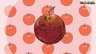 Invata Fructele in Engleza