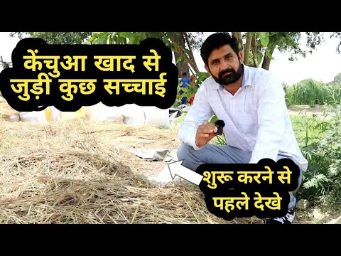 पहले देखने का है फायदा । How to start Vermicompost business।low investment business। vermicomposting