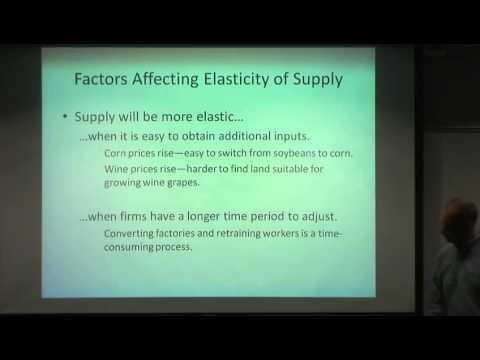 Determinants of elasticity