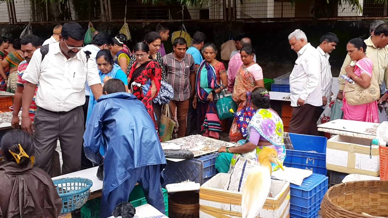 Fish market mumbai youtube for Best fish market nyc