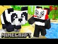 Things You Didn't Know About Pandas! Let's Play Minecraft Feeding A Panda Cake with Combo Panda