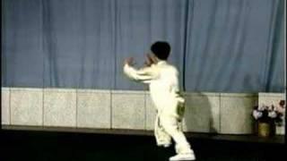 Tai-Chi Yang em 88 movimentos - Parte 1