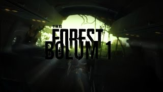 The Forest # 1 UÇAĞIN KOKPİTİ