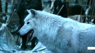 Download Jon and Ghost (Direwolf) -  Game of Thrones Mp3 and Videos