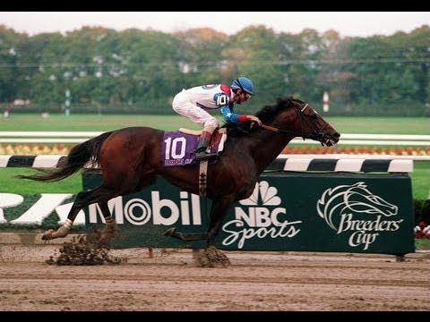 Cigar - 1995 Breeders' Cup Classic + Post Race & Interviews