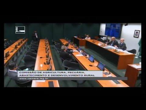 AGRICULTURA, PECUÁRIA, ABASTECIMENTO DESENV. RURAL - Reunião Deliberativa - 04/07/2018 - 10:23