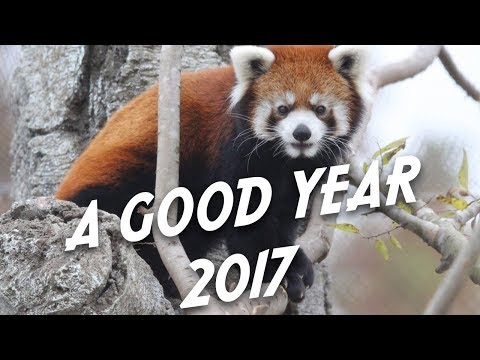 Tulsa Zoo 2017 Holiday Video