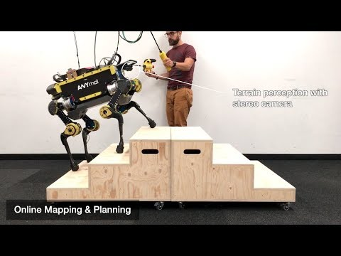 Robust Rough-Terrain Locomotion with a Quadrupedal Robot (ANYmal)