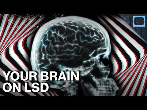 Why Does LSD Do Amazing & Terrible Things To Your Brain?