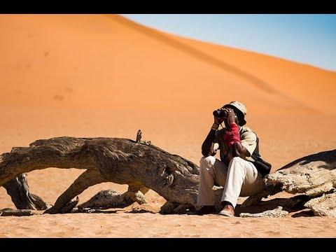 Namibia Self Drive Road Trip with safari highlights