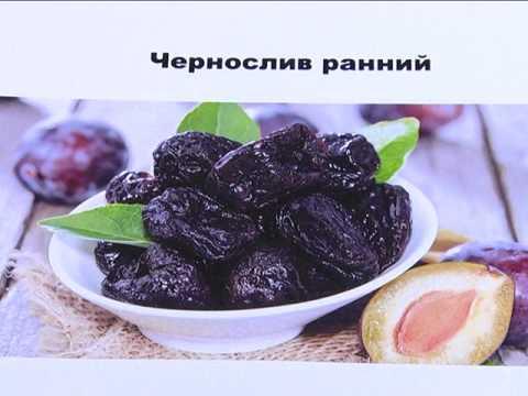Чем хороши саженцы плодовых  на полукарликах? (абрикос, чернослив, черешня и др.)