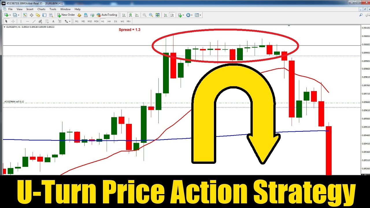Day Trading Strategies in Forex and Stock Markets With Free PDF