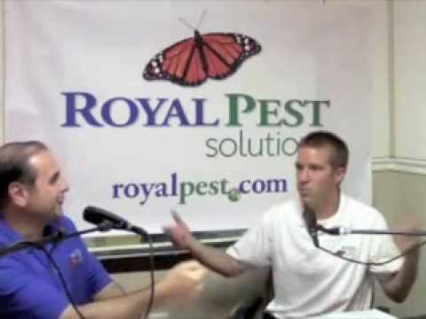 Royal Pest Solutions Ask the Entomologist WAMD 970 radio pro
