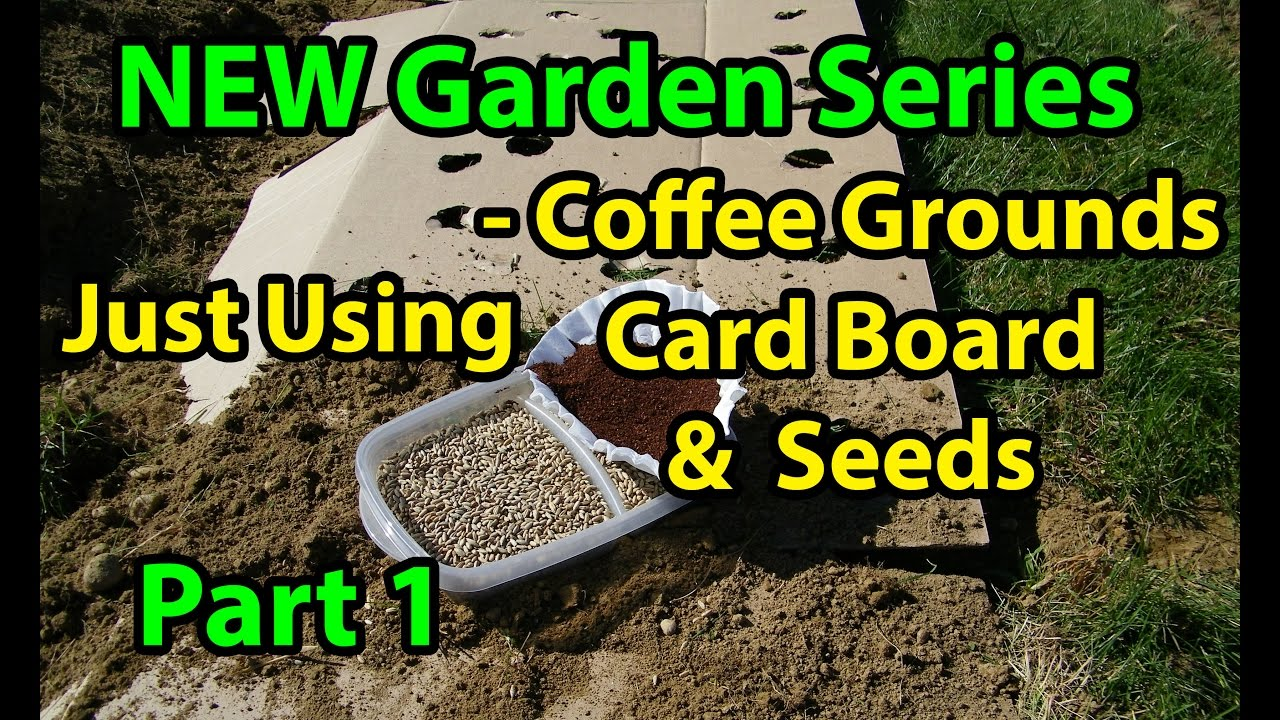 Coffee Grounds, Cardboard & Seeds - No Till Vegetables Gardening Series for Beginners - 101 Pt 1 - YouTube