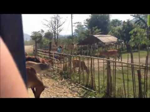 Trip to Laos, Lao People's Democratic Republic