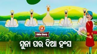 Suna Para Dia Hansa ସୁନା ପର ଦିଆ ହଂସ | Odia Moral Story For Kids | HookeHoo TV