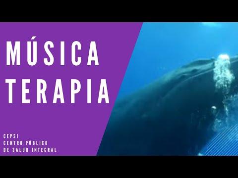 ♫ MUSICA Y VIDEO DE RELAJACION SONIDO DE BALLENAS AZULES. SONIDO ORIGINAL ♫