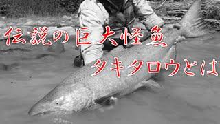 伝説の巨大魚「タキタロウ」についてのまとめ。 釣り人の夢は終わらない 巨大淡水魚の正体は!?