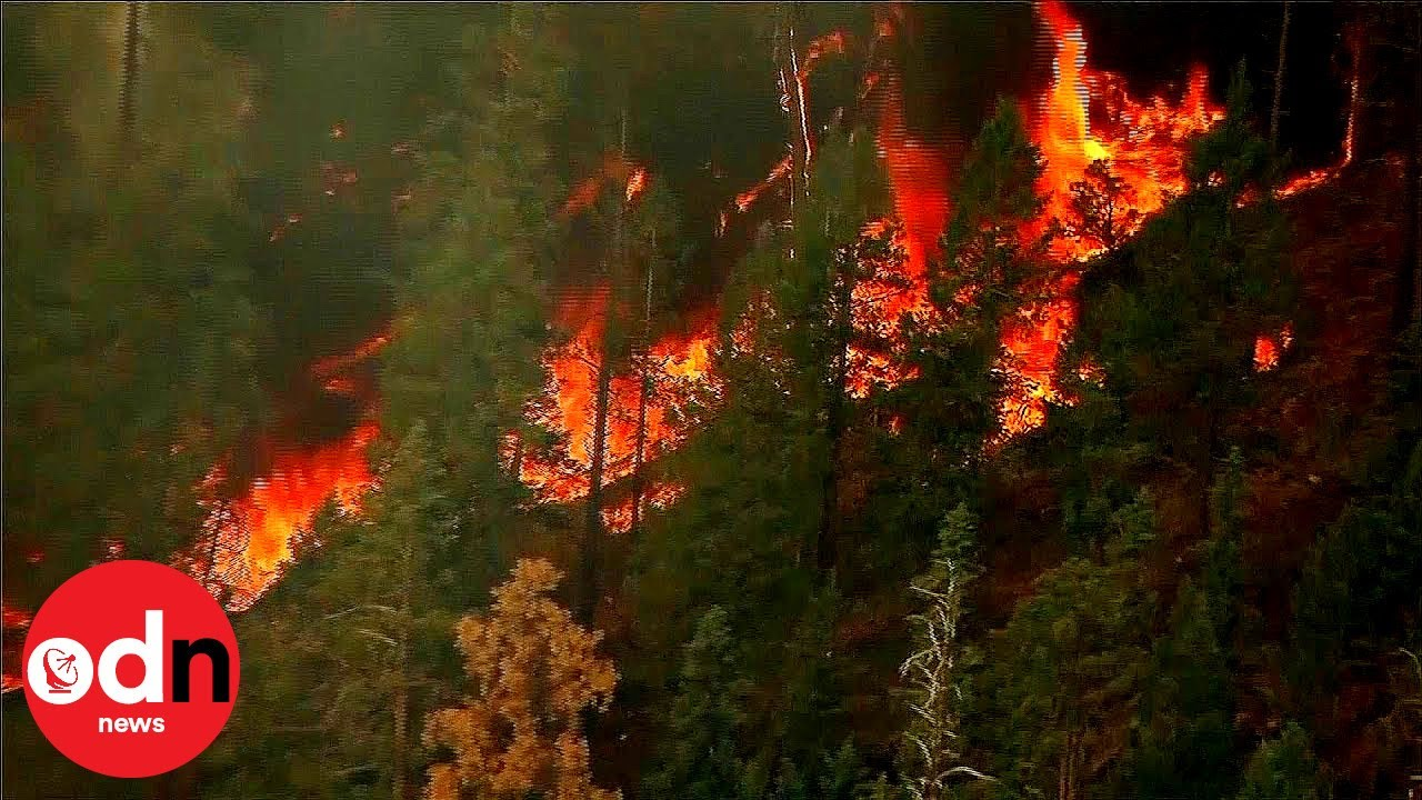 (ARIZONA, US July 2019) Air Crews Battle Huge Arizona Wildfire Burning 7,000 Acres