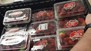 Metal Detection in Strawberries - Punnet vs crate? Needle in a haystack!