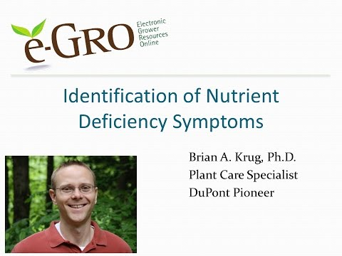 Identfication of Nutrient Deficiencies (Greenhouse Plants)