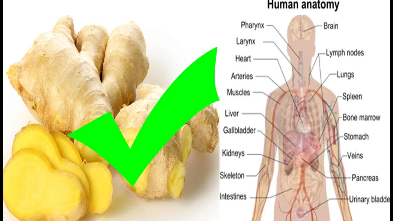 10 Health Benefits of Ginger forecast