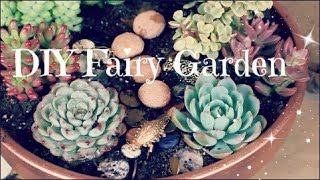 DIY Fairy Garden with succulents