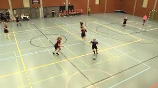 Naisten futsal-liiga 2019-2020 / ACE vs. Ylöjärven Ilves maalikooste 9.2.2020