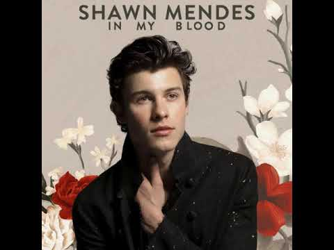 Shawn Mendes - In My Blood [MP3 Free Download]