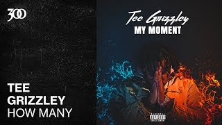 Tee Grizzley - How Many   300 Ent (Official Audio)