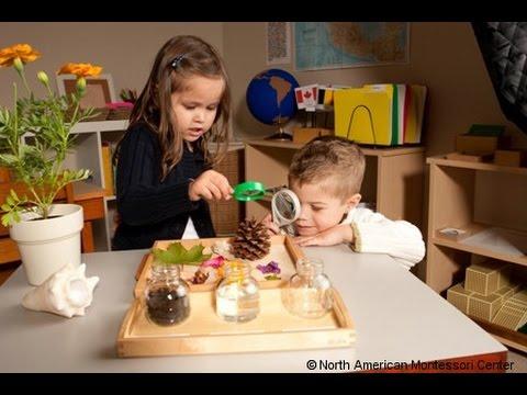 """""""La pédagogie Montessori à la portée de tous !"""" avec Sylvie d'Esclaibes"""