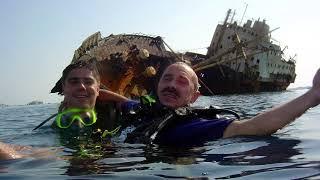 видео Дайвинг-центр «Дельфин» – Дайвинг в Египте, Шарм эль-Шейх, обучение, технический дайвинг, туры, сафари