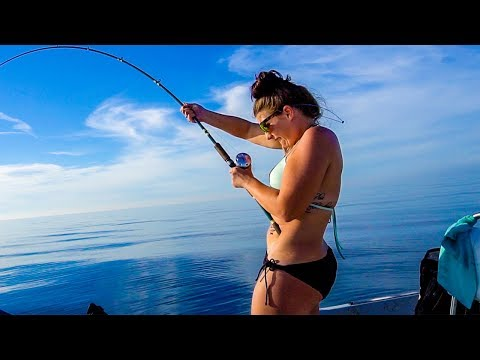 Offshore Fishing - Amberjacks and HUGE Shark!