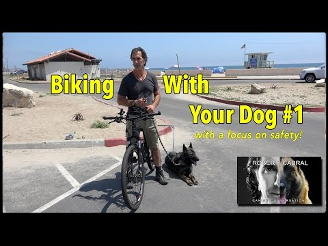 Biking With Your Dog - The 'How To Video' - Dog Training and Safety