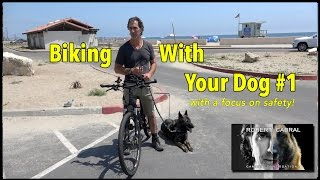 Biking With Your Dog  The 'How To Video'  Dog Training and Safety