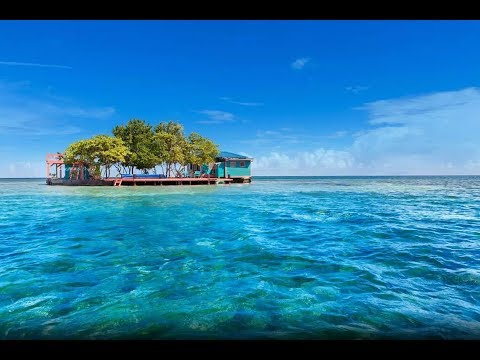 Bird Island Placencia, Belize