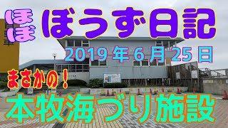 ぼうず日記21(本牧海づり施設)※2019年6月25日)
