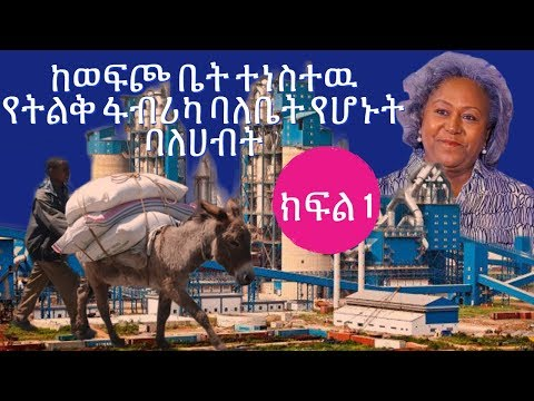 Woldeher Yizengaw CEOand Owner of Ghion Industrial and commercial plc interview with Meaza Biru