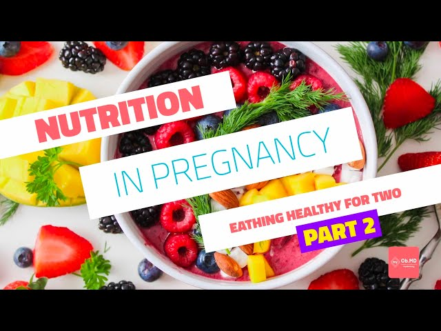 myObMD Nutrition In Pregnancy Pt  2 Video in English