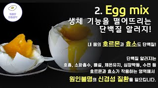 명쾌한한의원] Egg mix 계란 단백질 알러지 완화 …