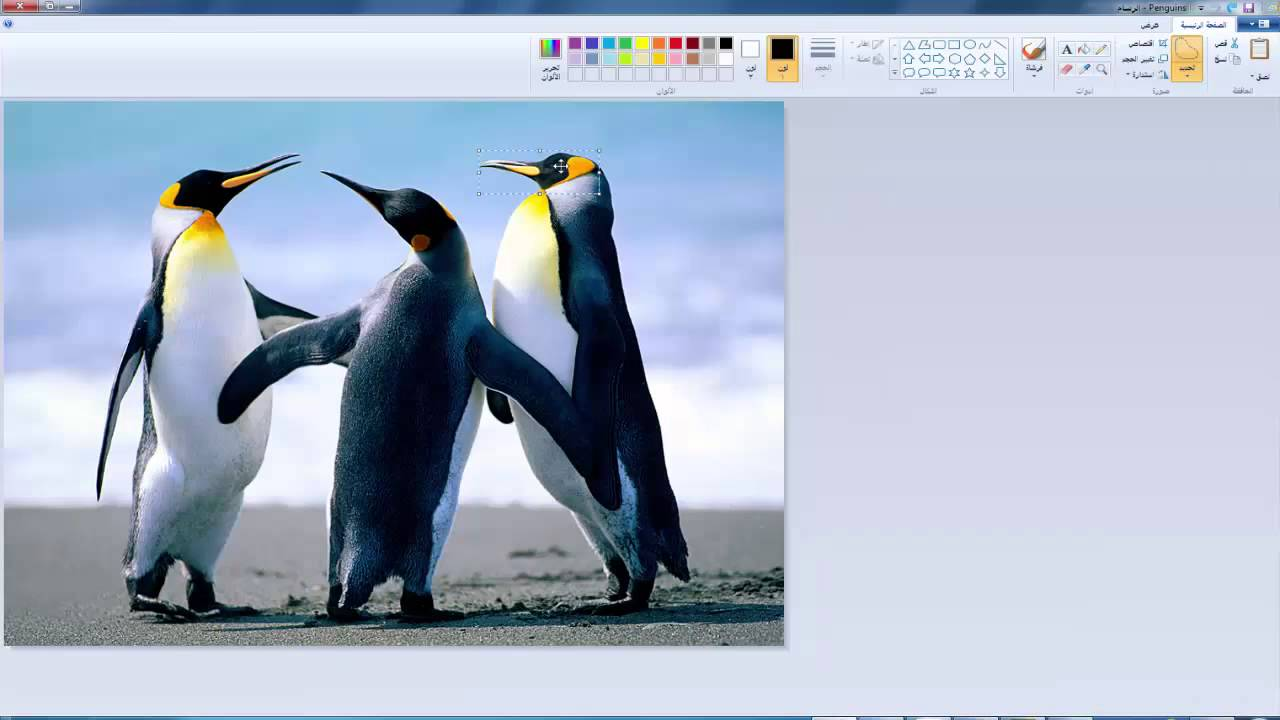 3تغير خلفية الصور ببرنامج الرسام Youtube
